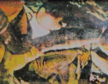 """NOT TELLING"" // Lightbox, Silkscreen on Acrylic"
